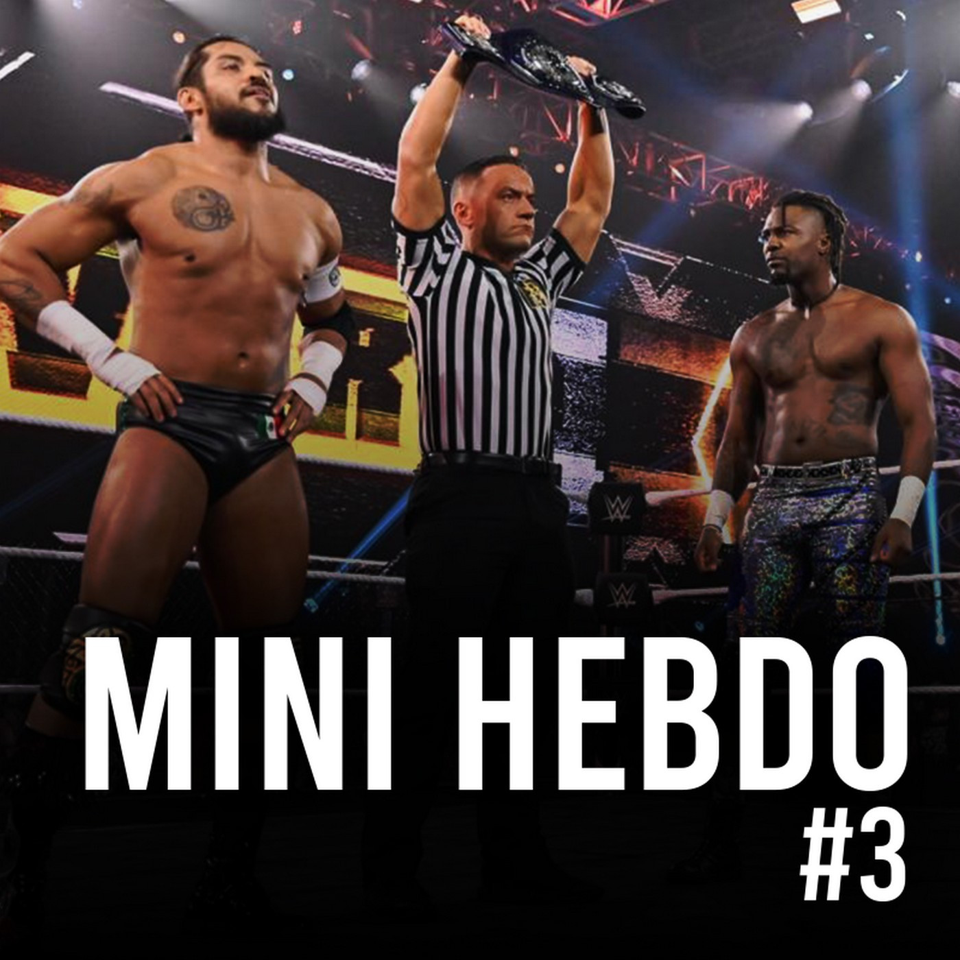 Les Rebuts du Catch : MiniHebdo #3 : Review NXT TAKEOVER 31