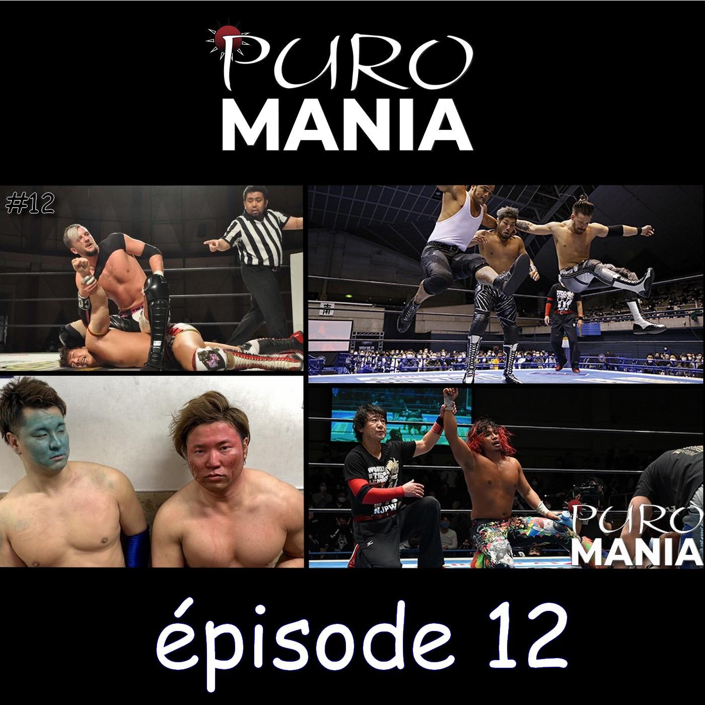 PuroMania #12 : Tag League NJPW - 4,5,6 et AJPW - 3,4, BOSJ - 4,5,6 + DDT D-Ou Grand Prix 2,3,4