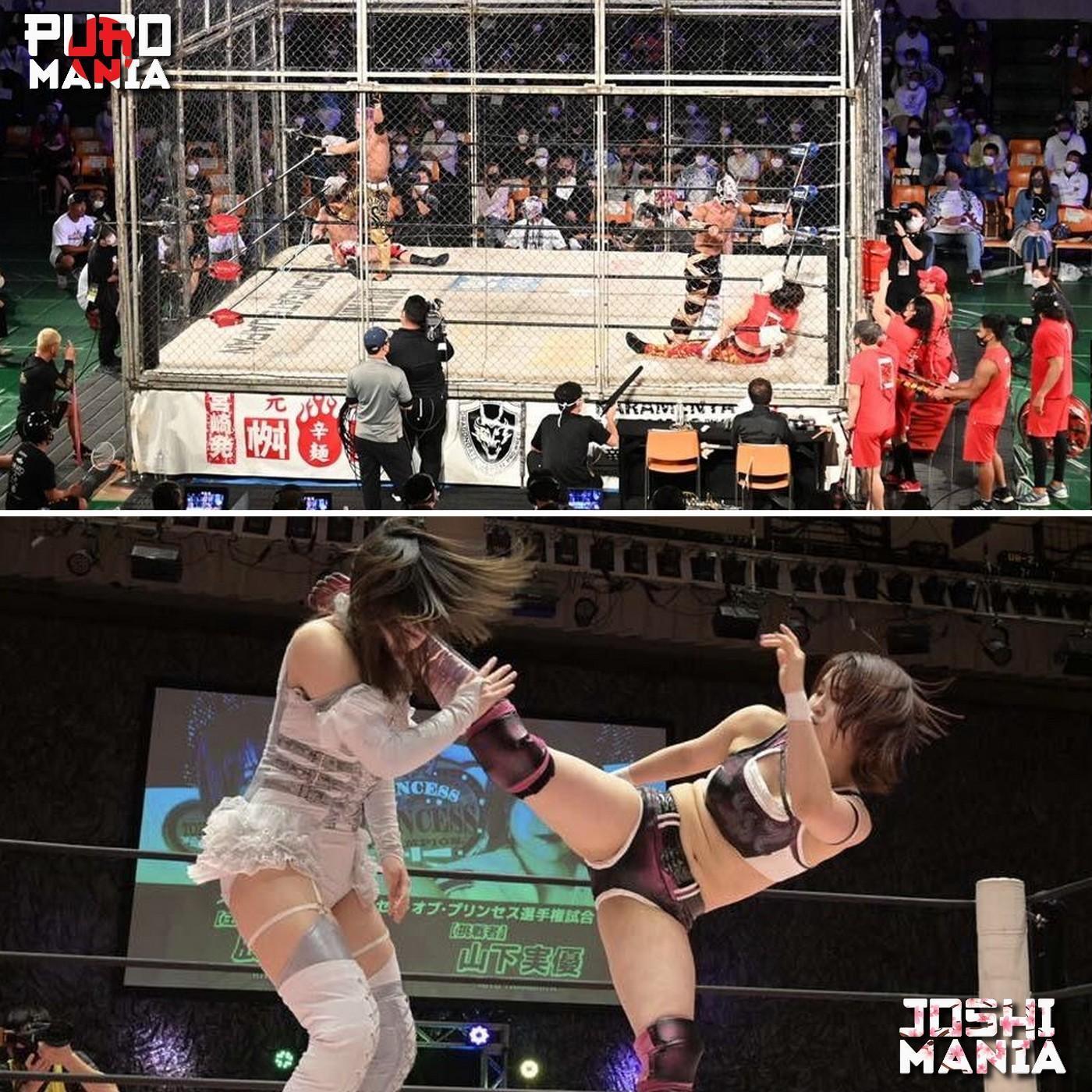 Puromania #33 : TJPW nous sort un moty ? / DragonGate Dead or Alive / Tag league de DDT