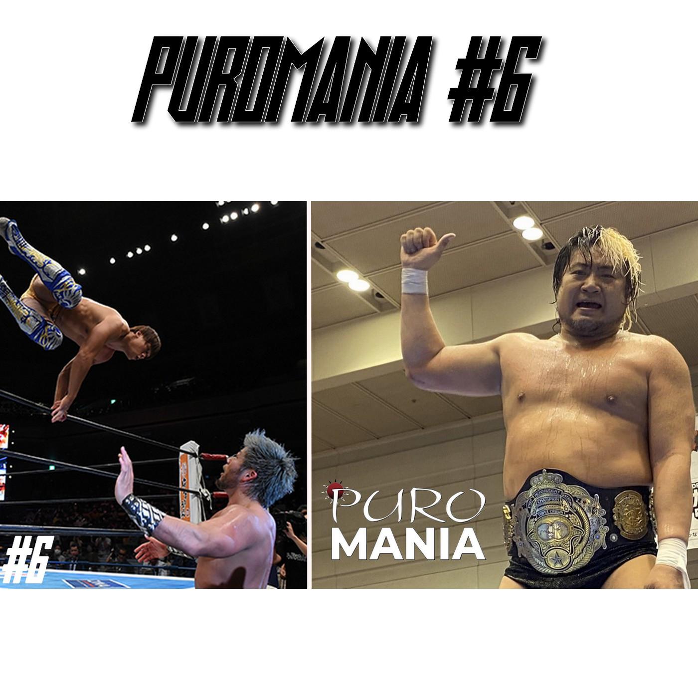 PuroMania #6 Review G1 CLIMAX 30 Day 14 à la Final / AJPW TITLE MATCH