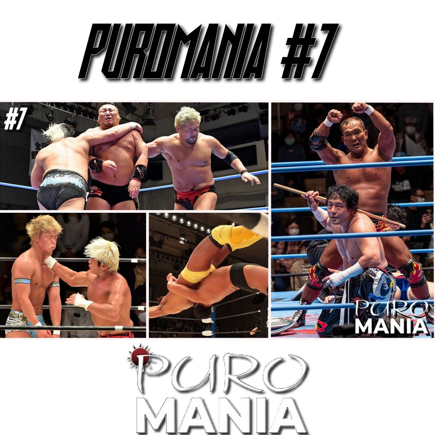 PuroMania #7 Le premier show de GLEAT / AJPW Tag Title Review !