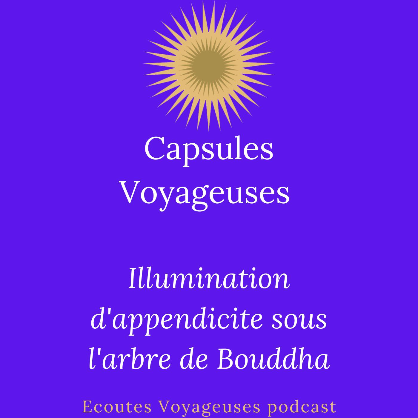 Illumination d'appendicite sous l'arbre de Bouddha / Capsules Voyageuses