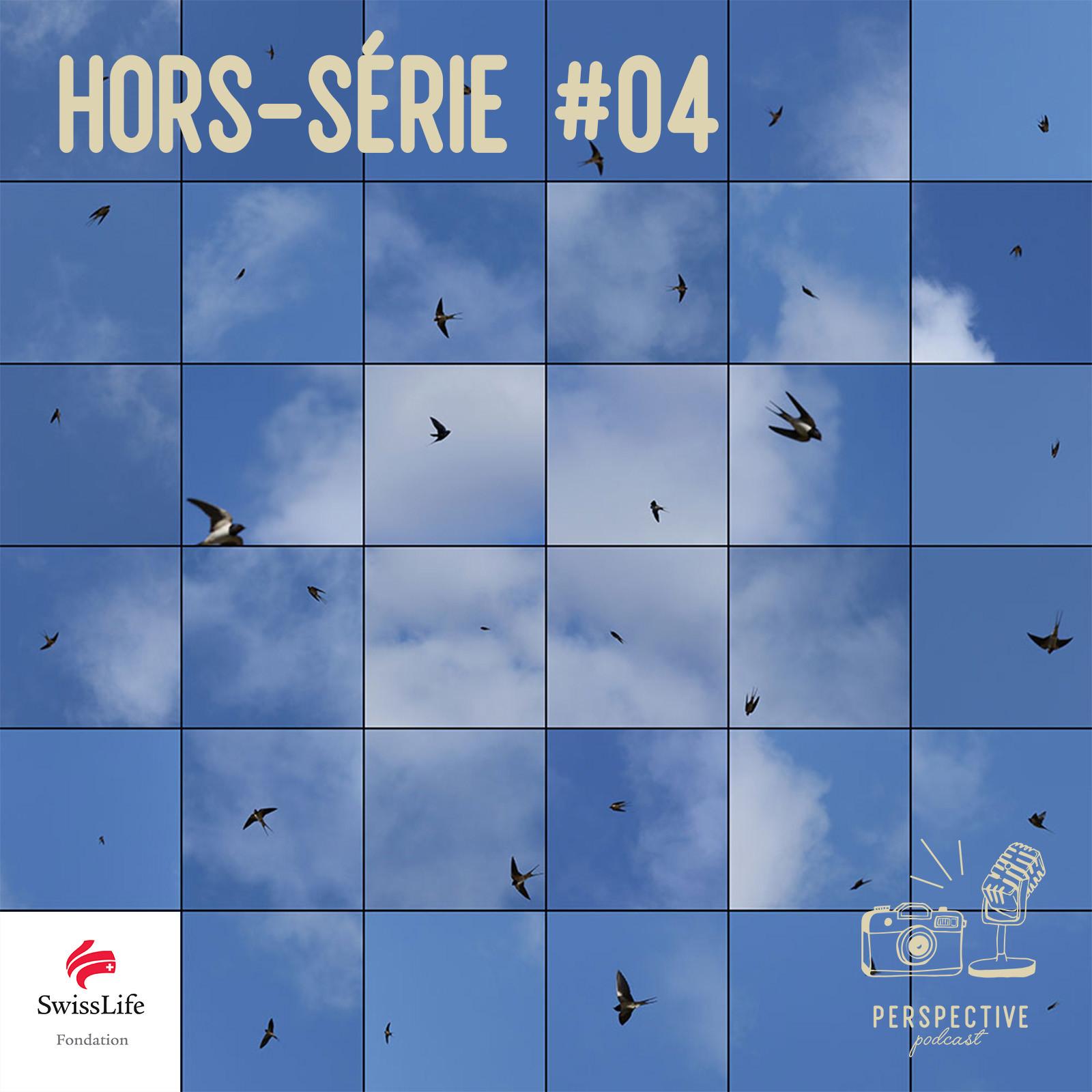 HS #4 | Le Bleu du Ciel | Variation onirique en image et en musique sur le vol de l'hirondelle
