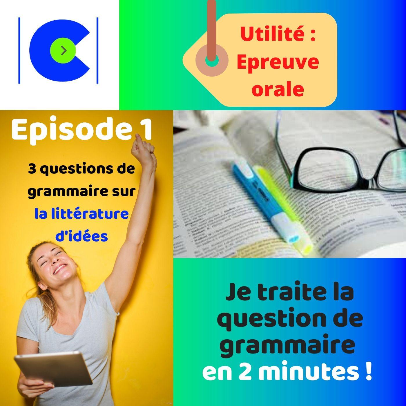 Comment répondre en 2 minutes à la question de grammaire ? Episode Littérature d'idées.