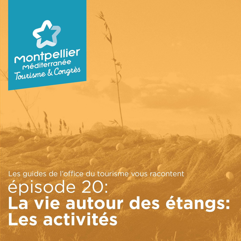 Épisode 20: La vie autour des étangs: Les activités