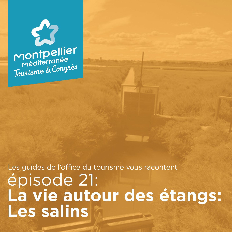 Épisode 21: La vie autour des étangs: Les Salins