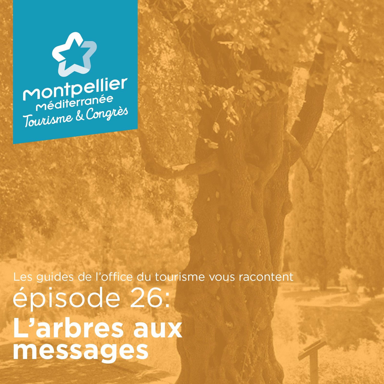 Épisode 26: L'arbre aux messages