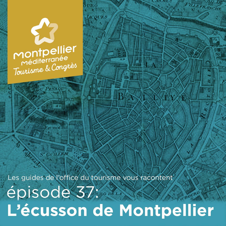 Épisode 37 L'écusson De Montpellier