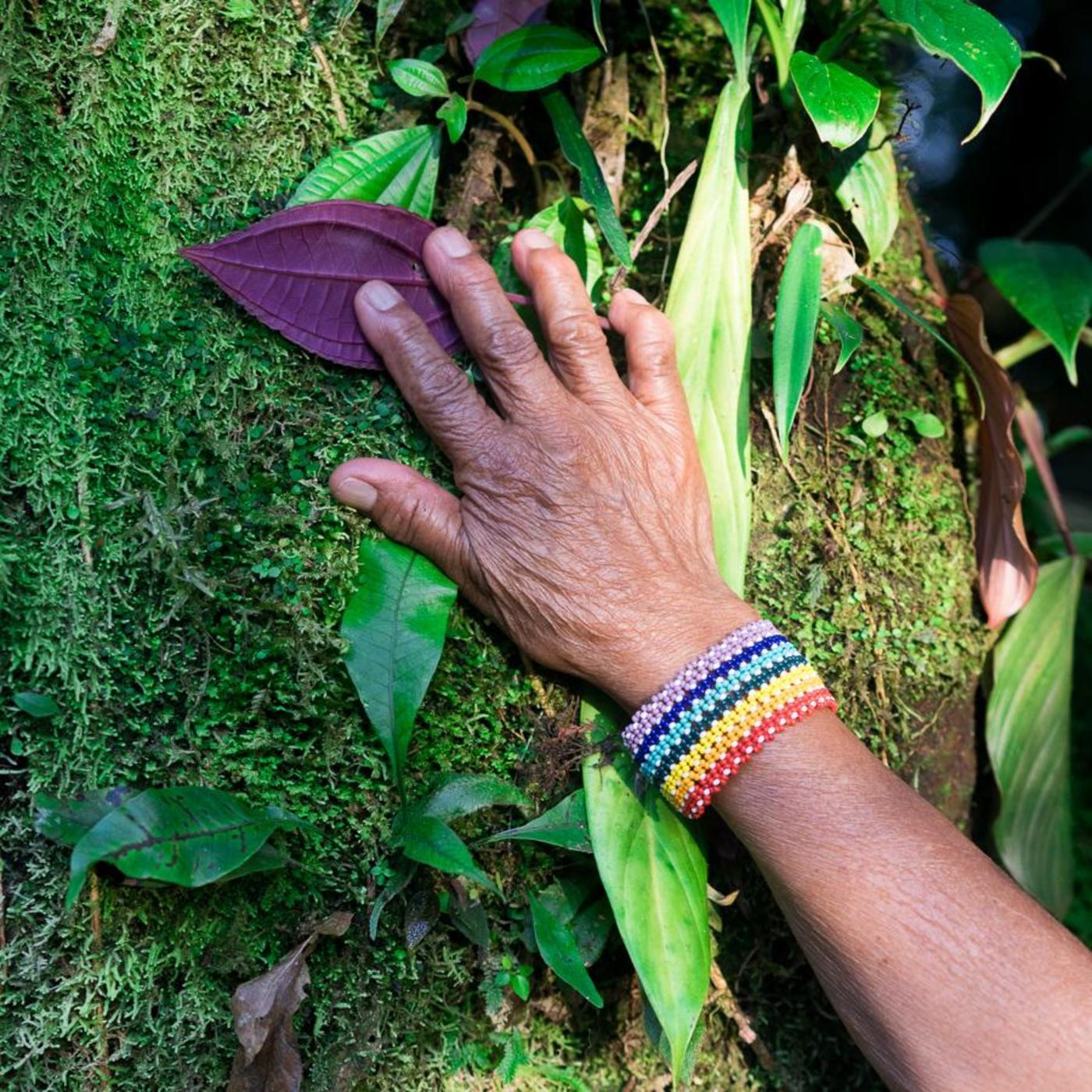 La Nouvelle génération des écoféministes autochtones