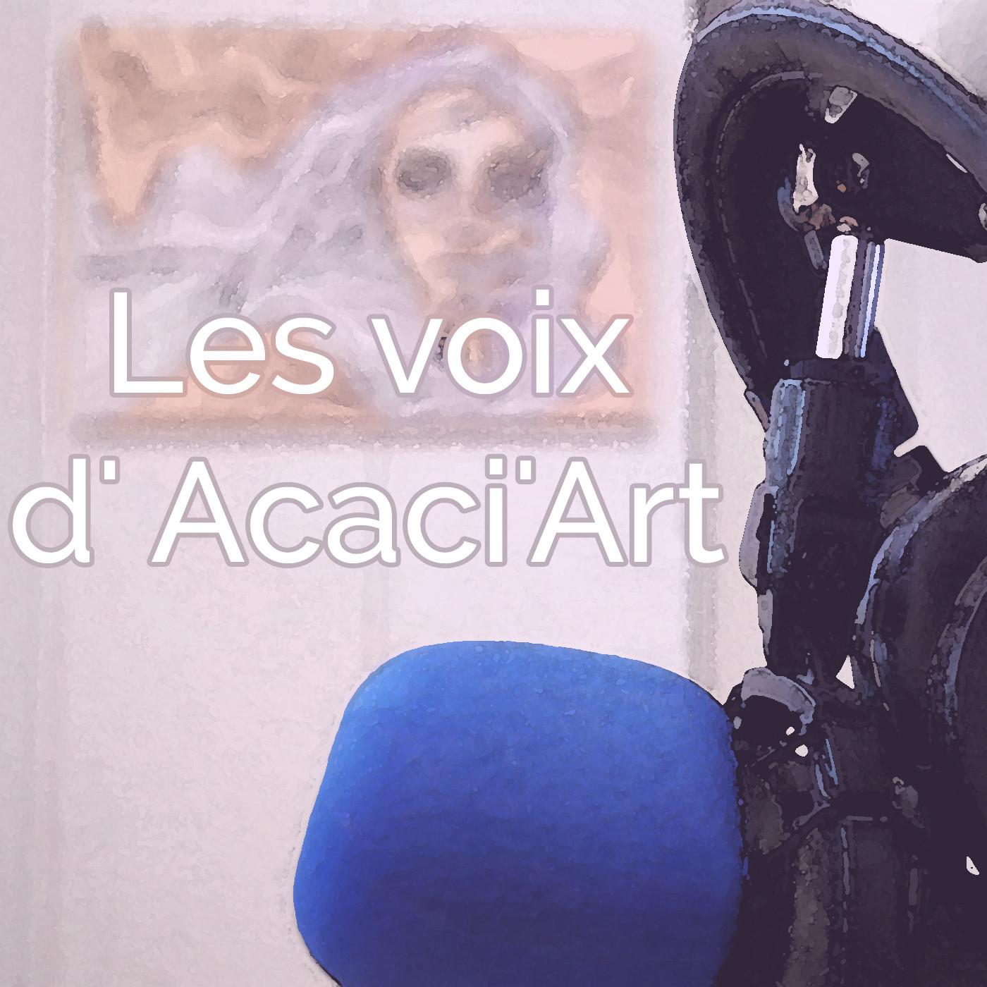 Les voix d'Acaci'Art - Cyril Larvor alias Black Bird - Street-artist