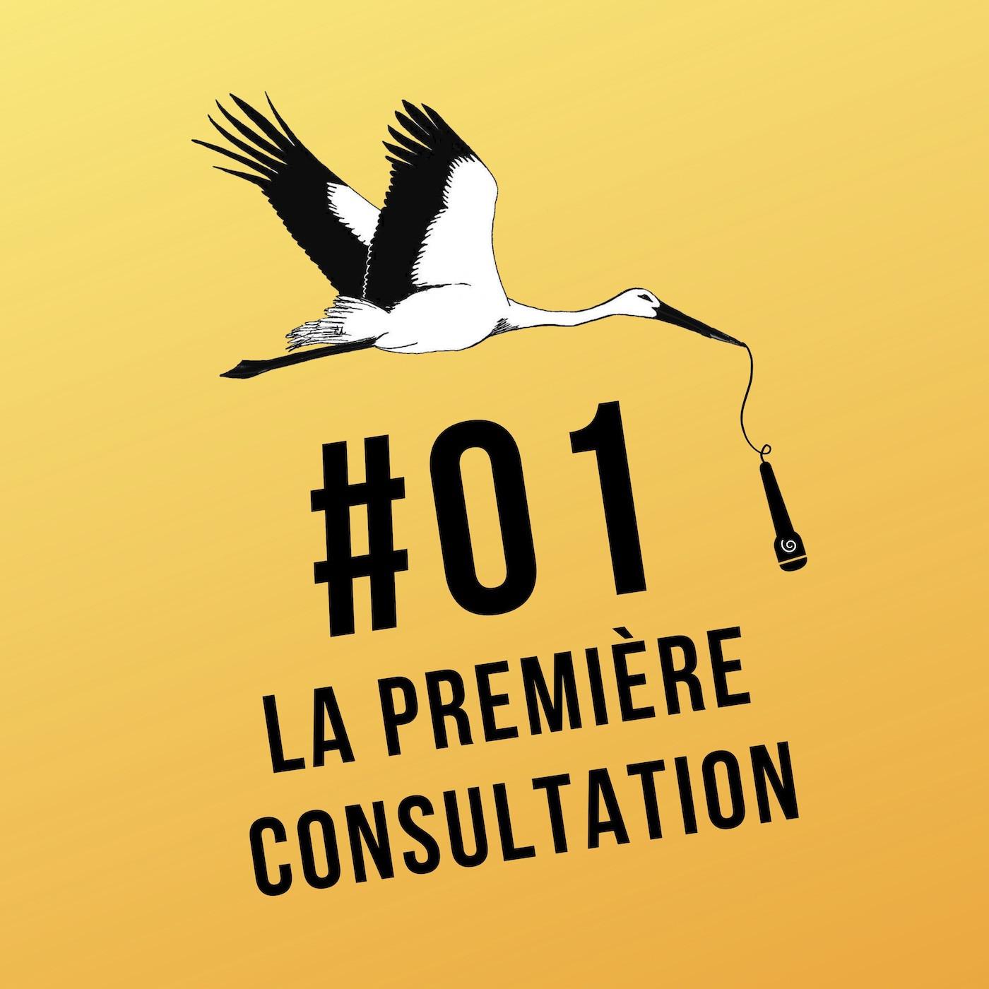 """Ép-01 """"La première consultation"""""""
