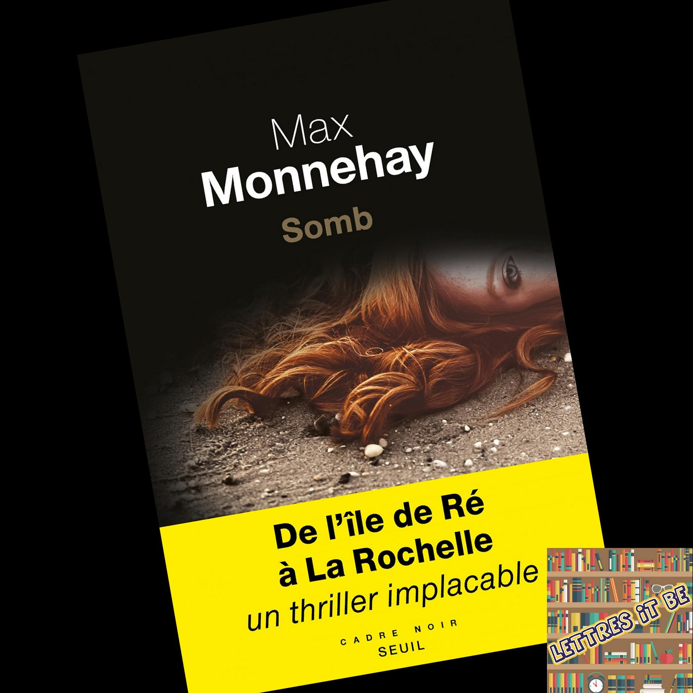 Critique de Somb de Max Monnehay (Livre)