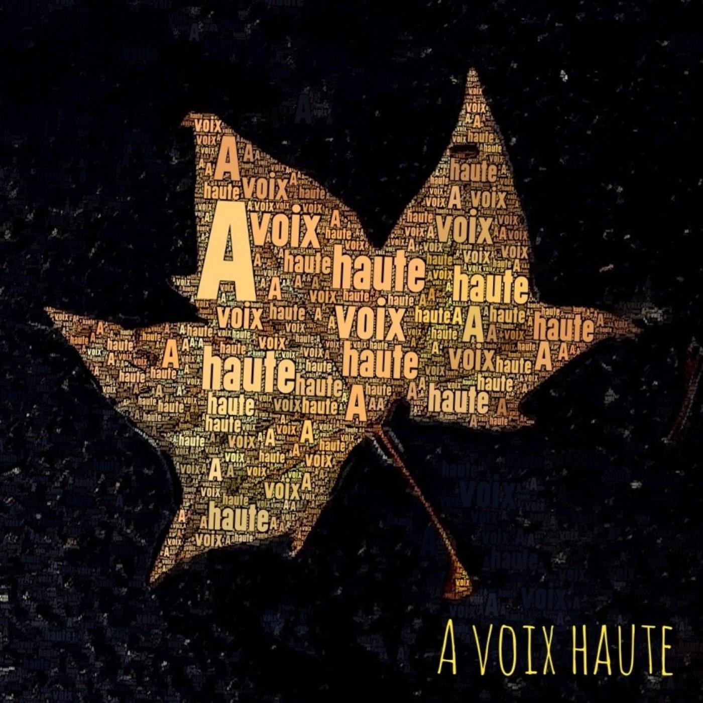 Conte Populaire Russe - Ivan Tsarevitch, la sorcière et la soeur soleil - voix  Yannick Debain.