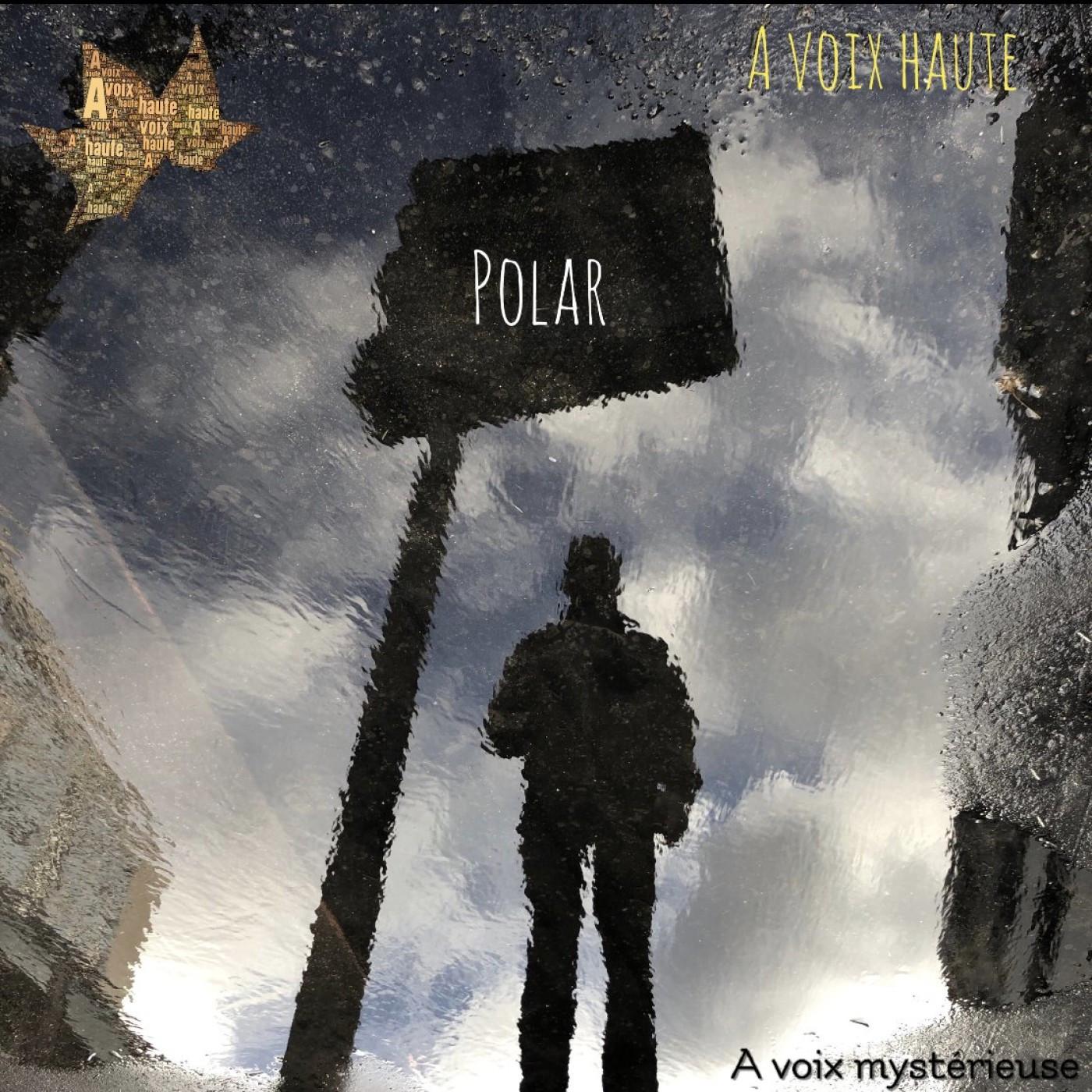 A Voix Mysterieuse - Etranges Disparitions INTEGRAL - Jerome Fouquet - voix  Yannick Debain.
