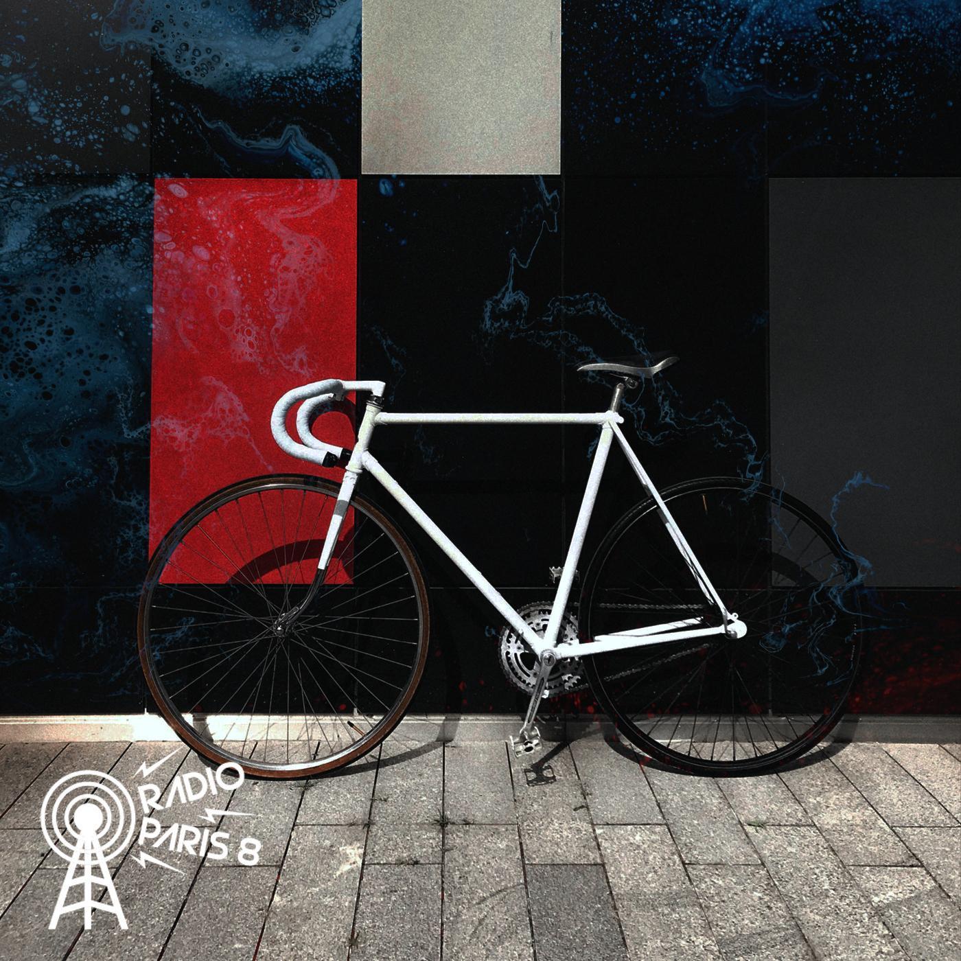 Petites histoires singulières - Les vélos blancs d'Amsterdam