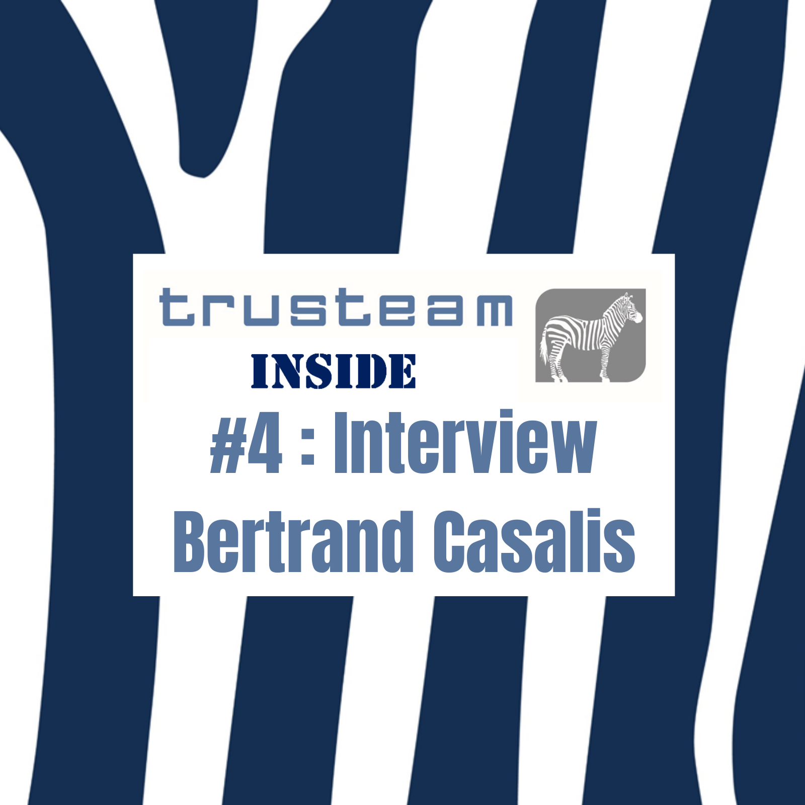 #4 Interview Bertrand Casalis Trusteam ROC