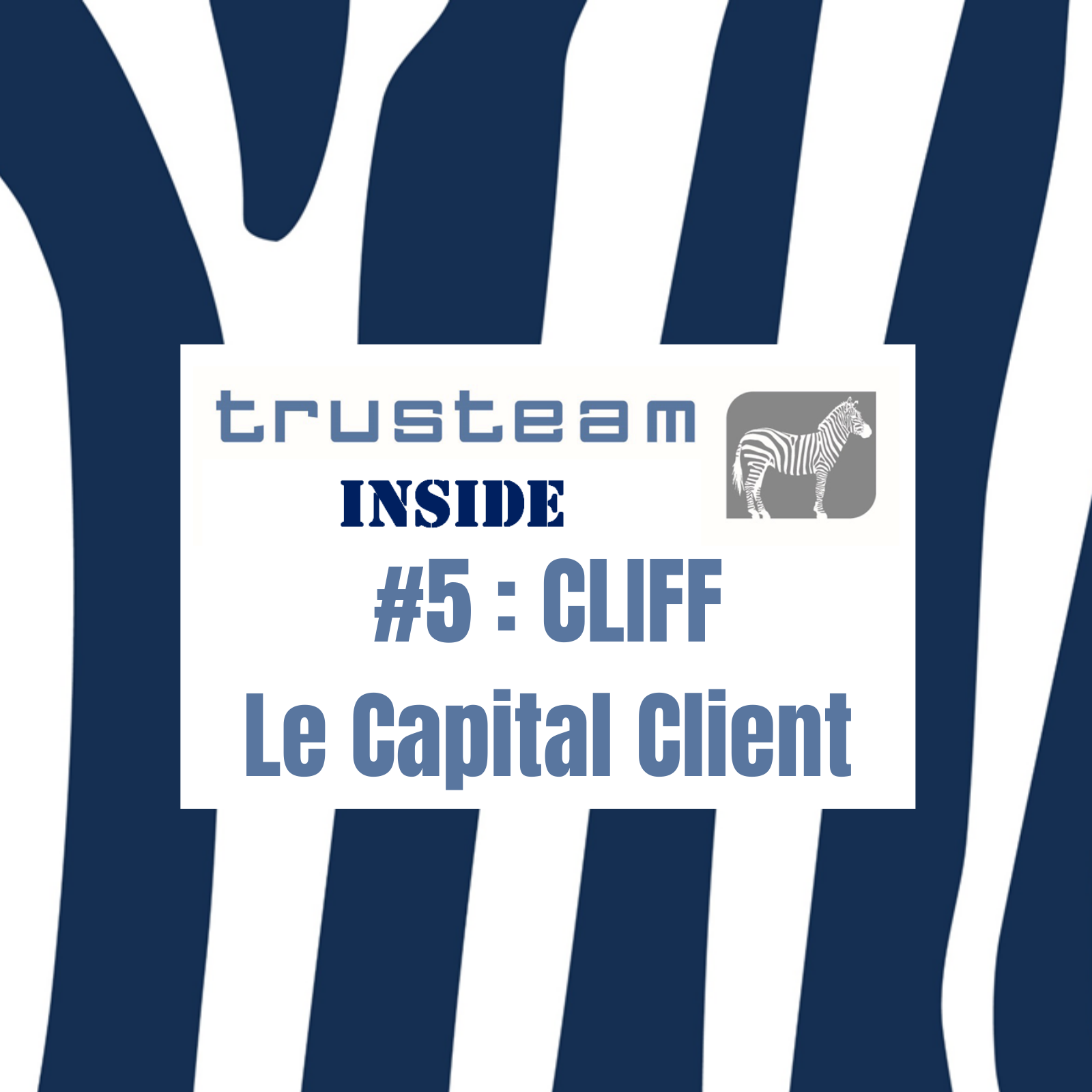 #5 CLIFF Le Capital Client