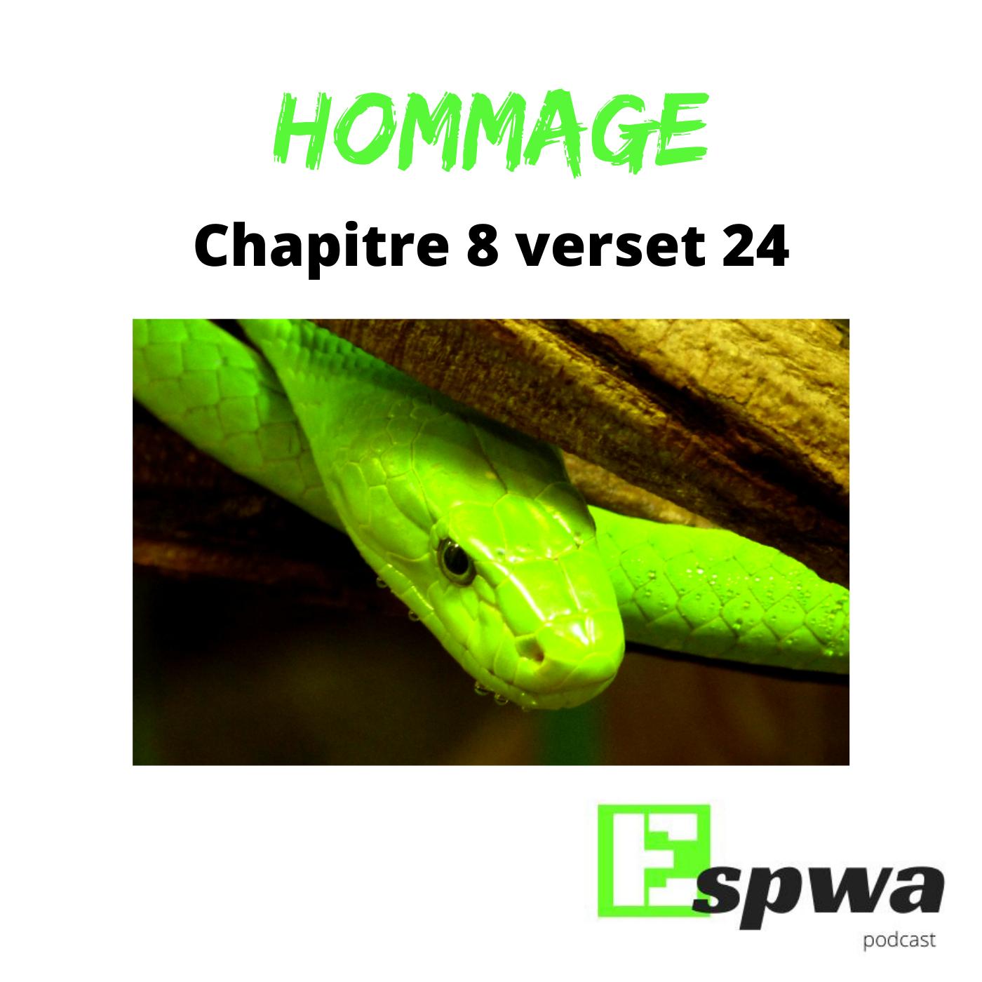 Hommage - Chapitre 8 verset 24