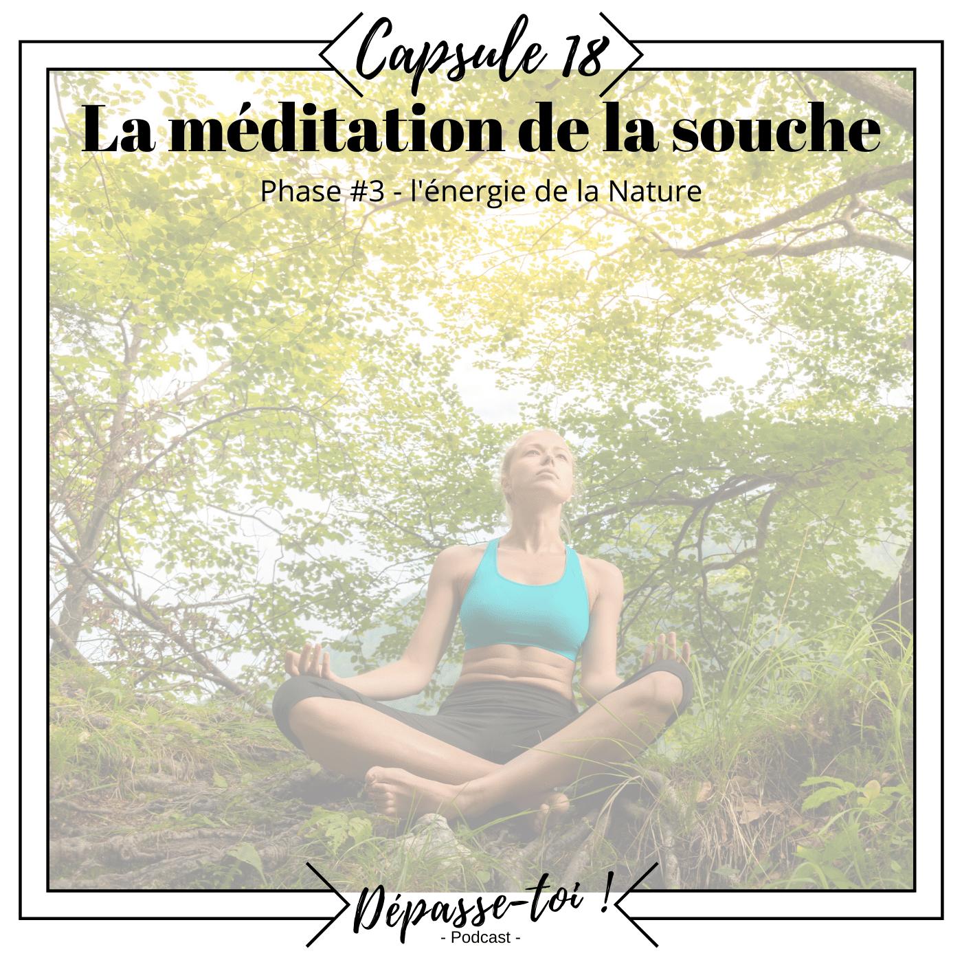 Capsule #18 -  Méditation de la souche (Guidée) - l'énergie de la Nature 3/3