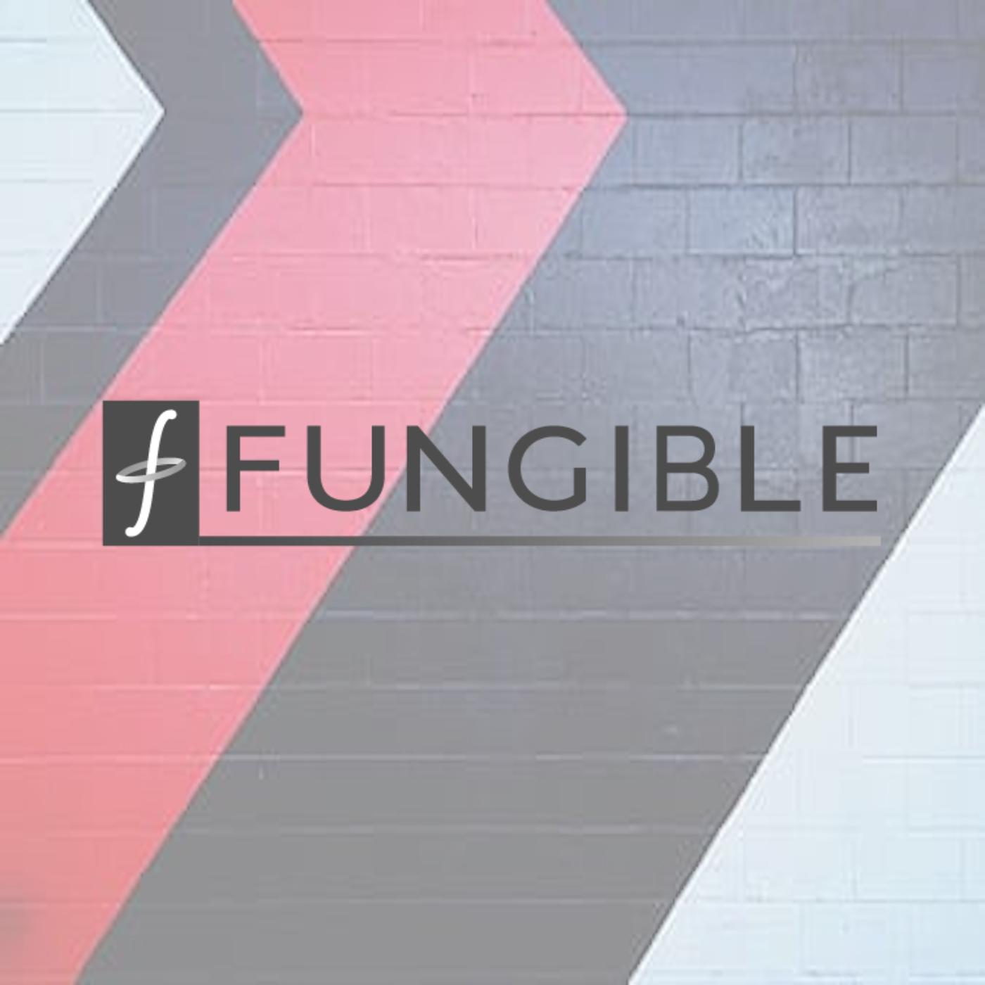 Entretien avec Bertrand Serlet : Co-fondateur @Fungible