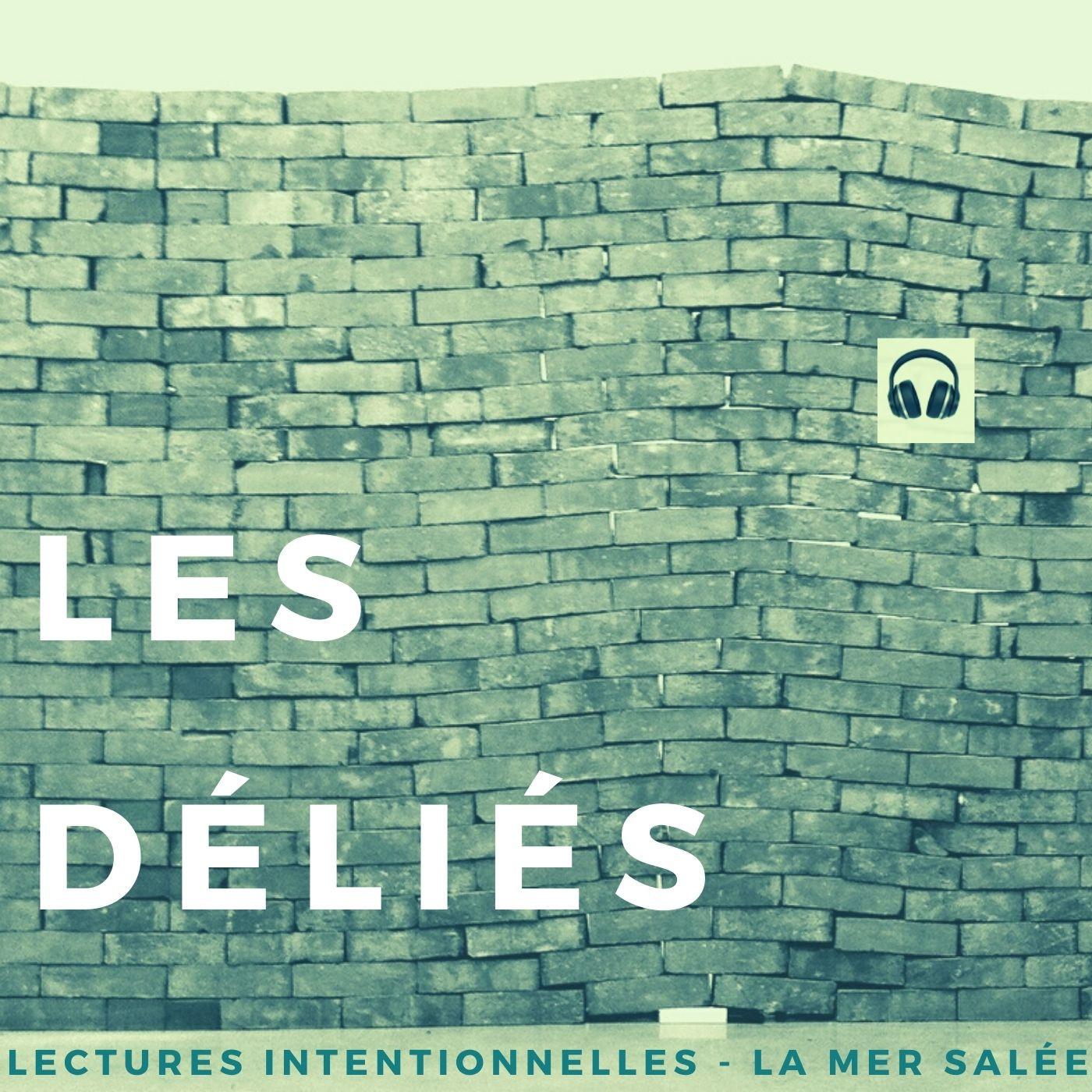 """""""Les déliés"""" de Sandrine Roudaut - Extrait 1"""