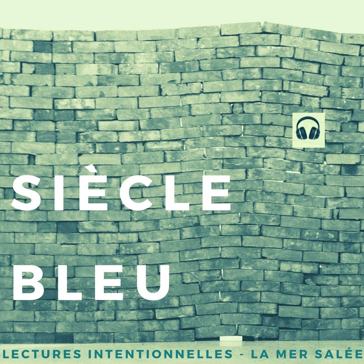 """""""Siècle Bleu"""" de Jean-Pierre Goux - Extrait 1 tome 1"""