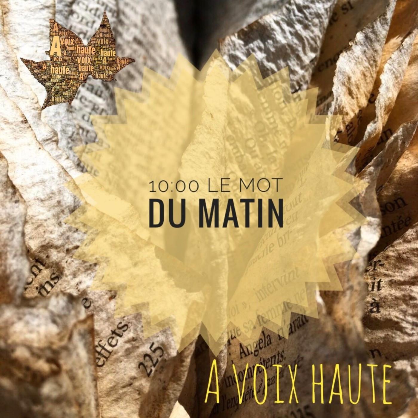28 - LE MOT DU MATIN - Francoise Sagan - Yannick Debain.