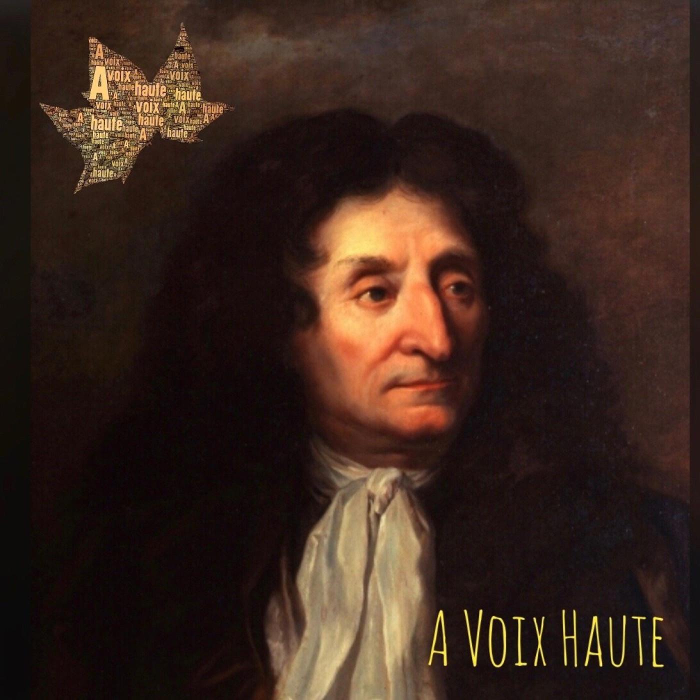 Jean De La Fontaine -Les Fables - Le loup et le chien. Conteur : Yannick Debain