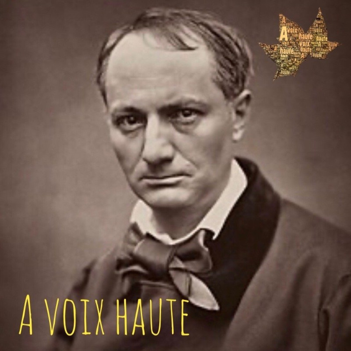 Charles Baudelaire  - Les fleurs du Mal - La Chevelure - Yannick Debain.
