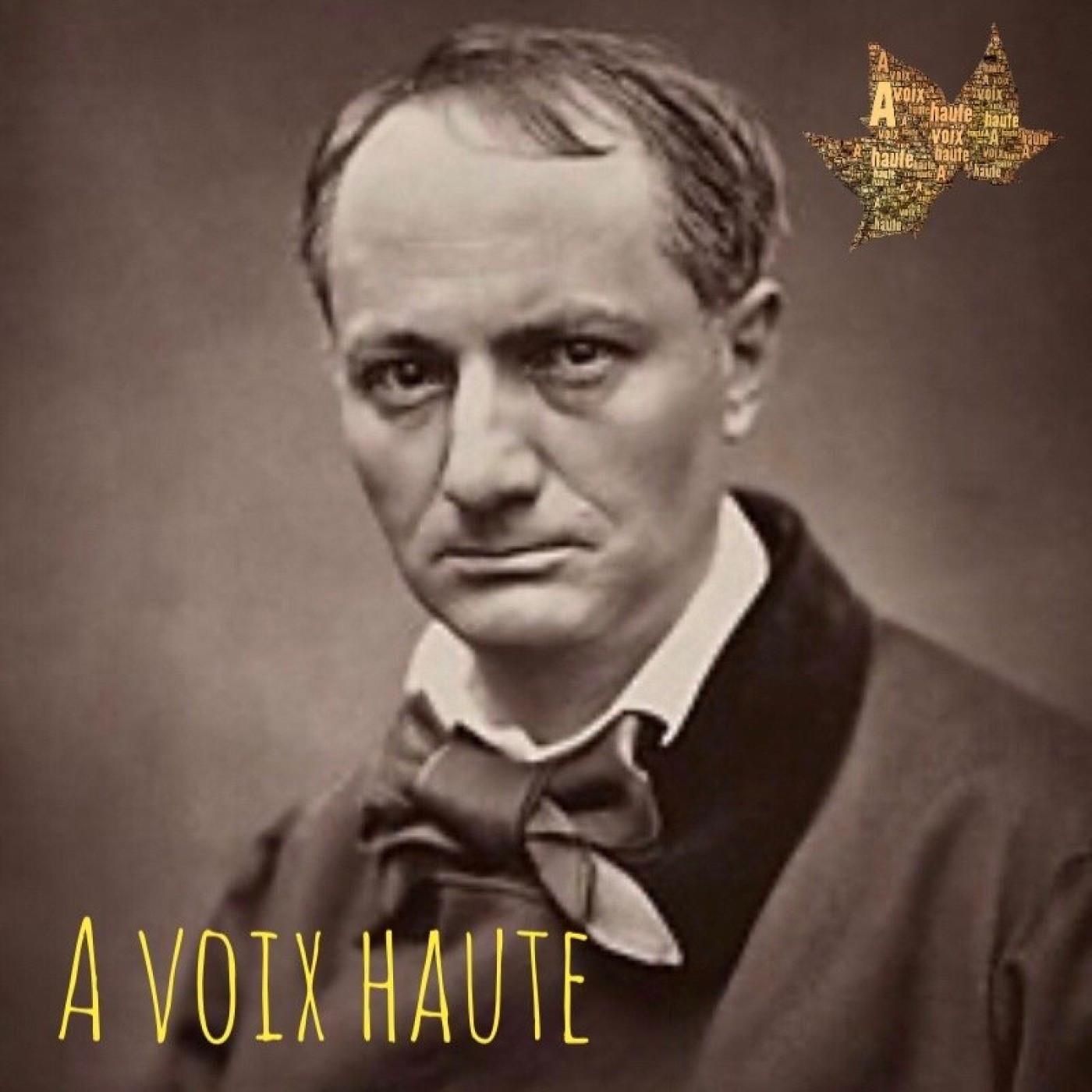 Charles Baudelaire -  les fleurs du Mal - Les Hiboux -  Yannick Debain