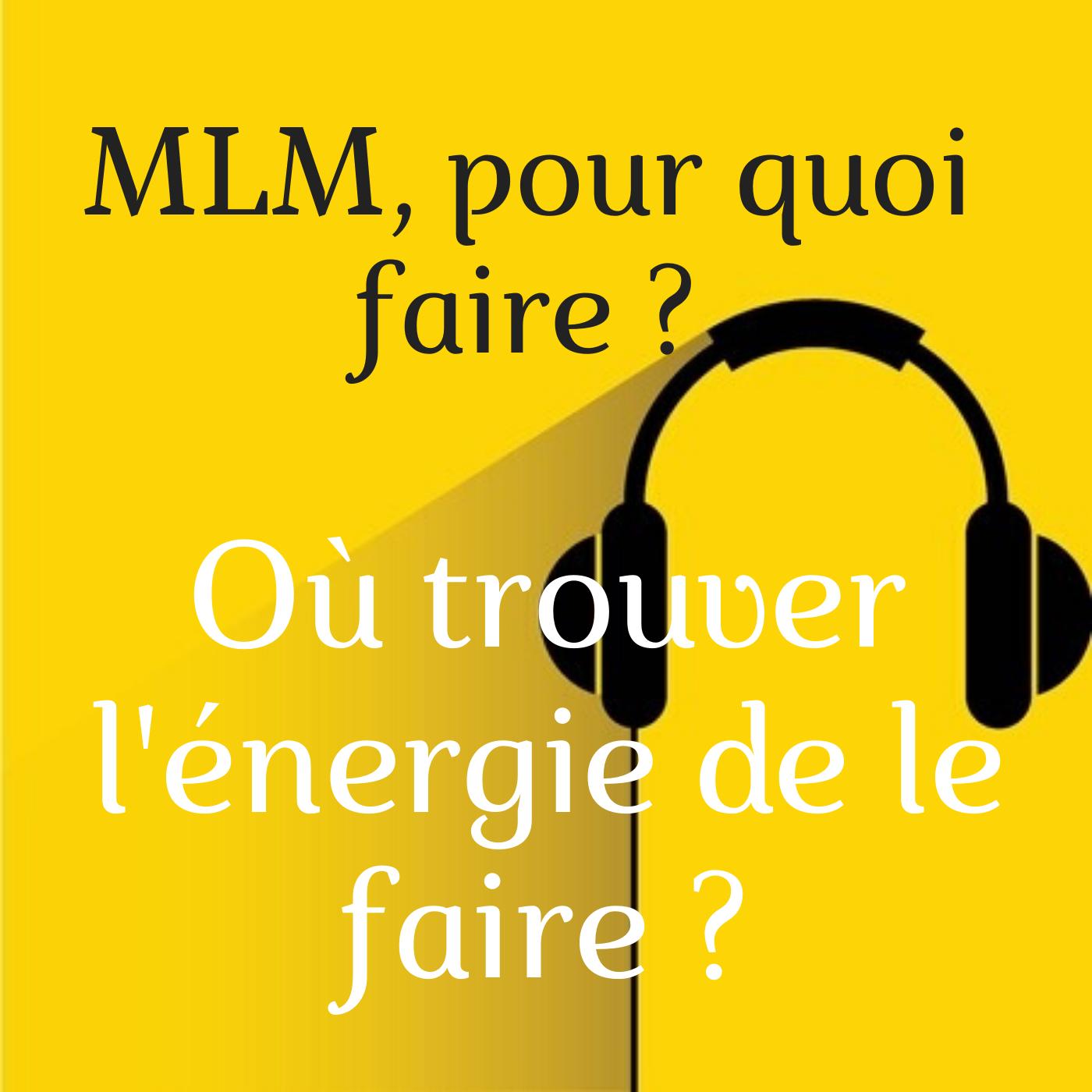 MLM, pour quoi Faire ?