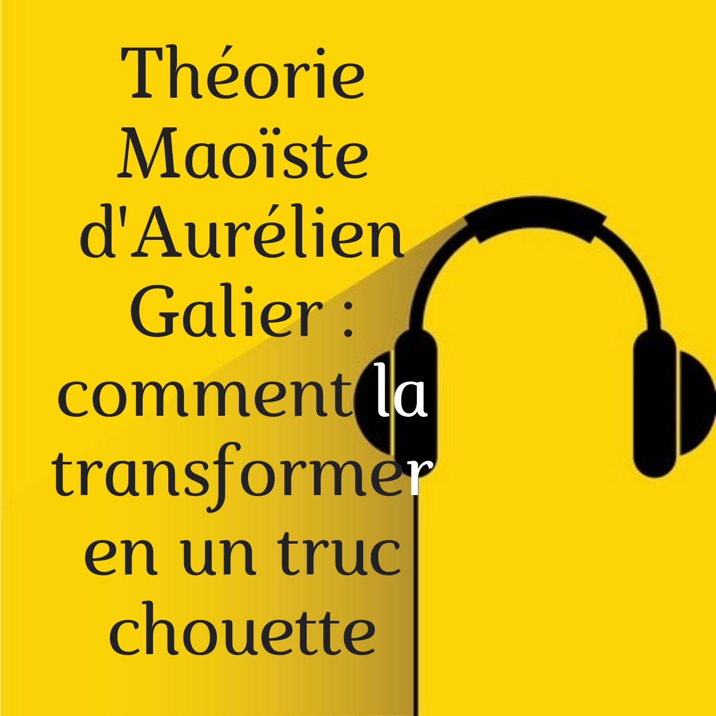 La théorie Maoïste d'Aurélien Gallier et son compère Sébastien