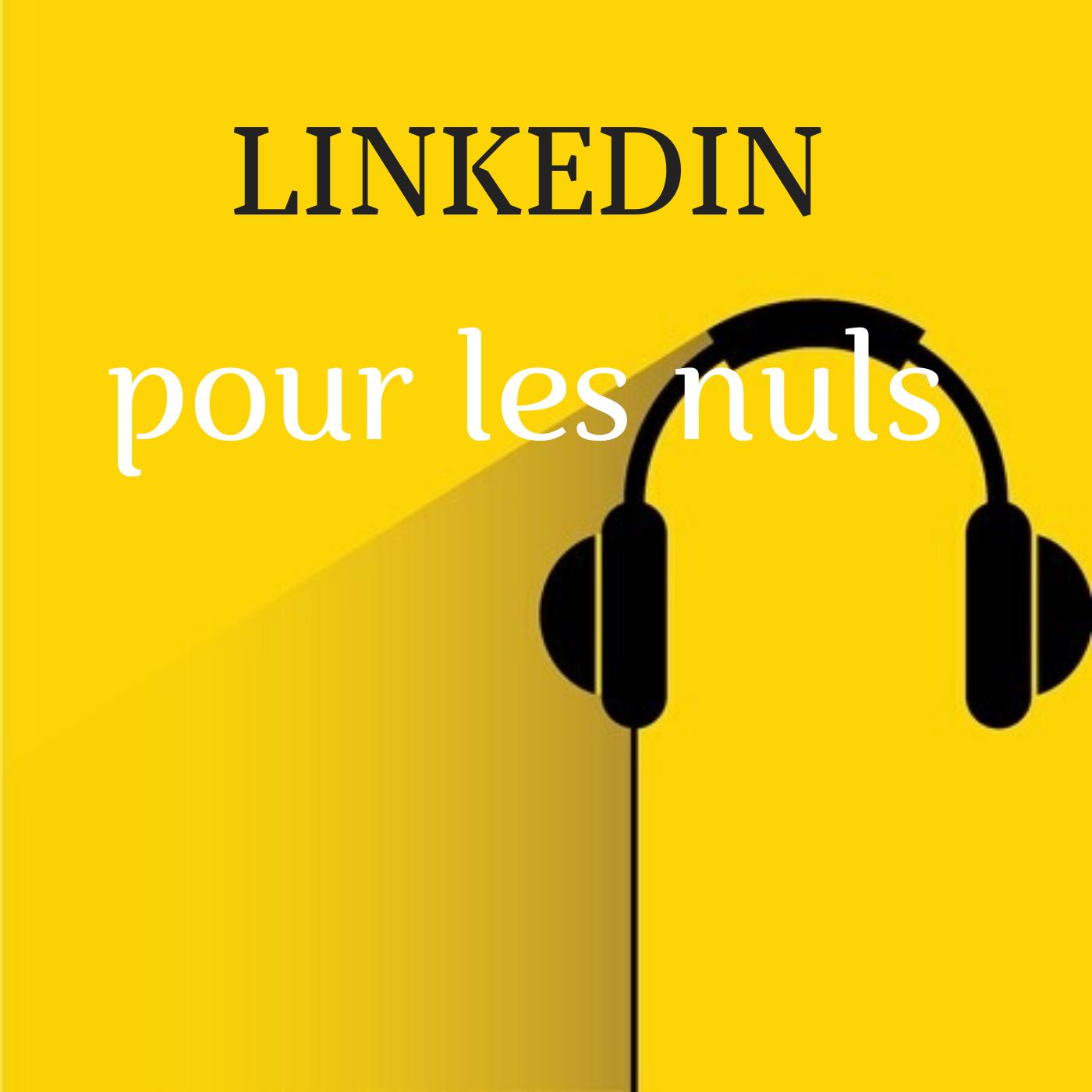 MLM et Linkedin pour les nuls