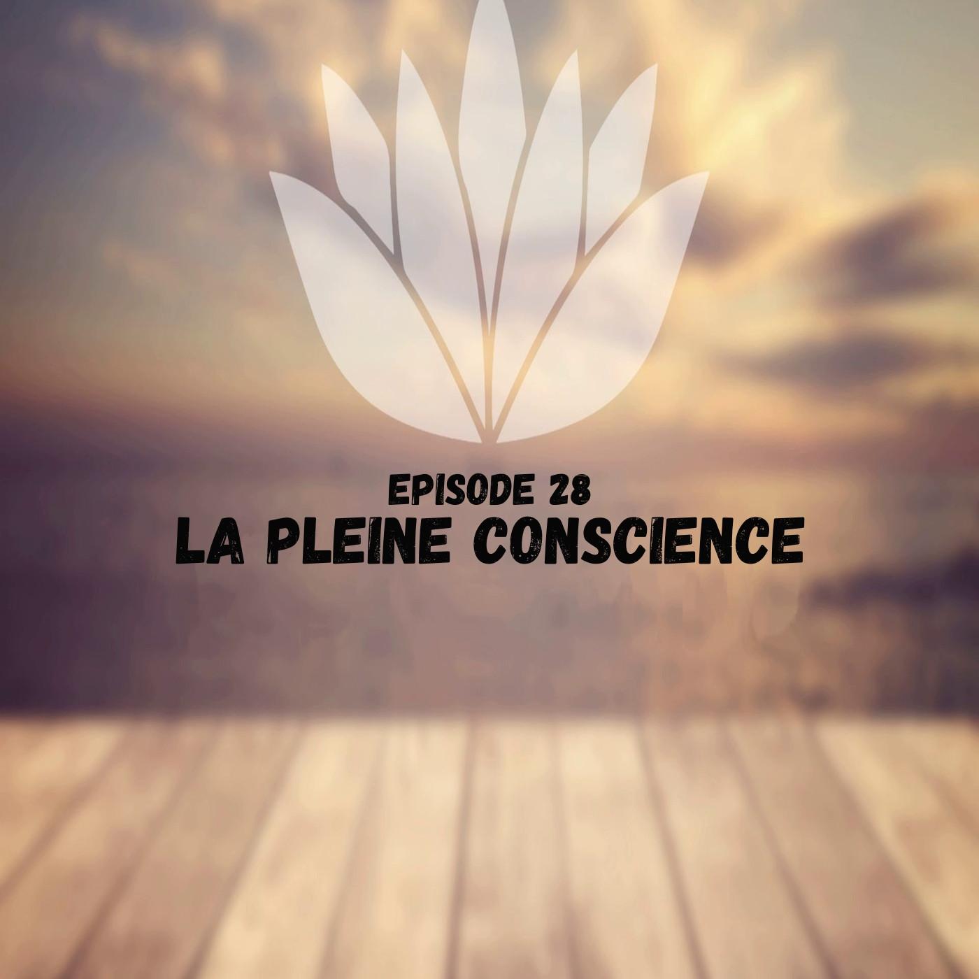 Episode 28 Pleine Conscience