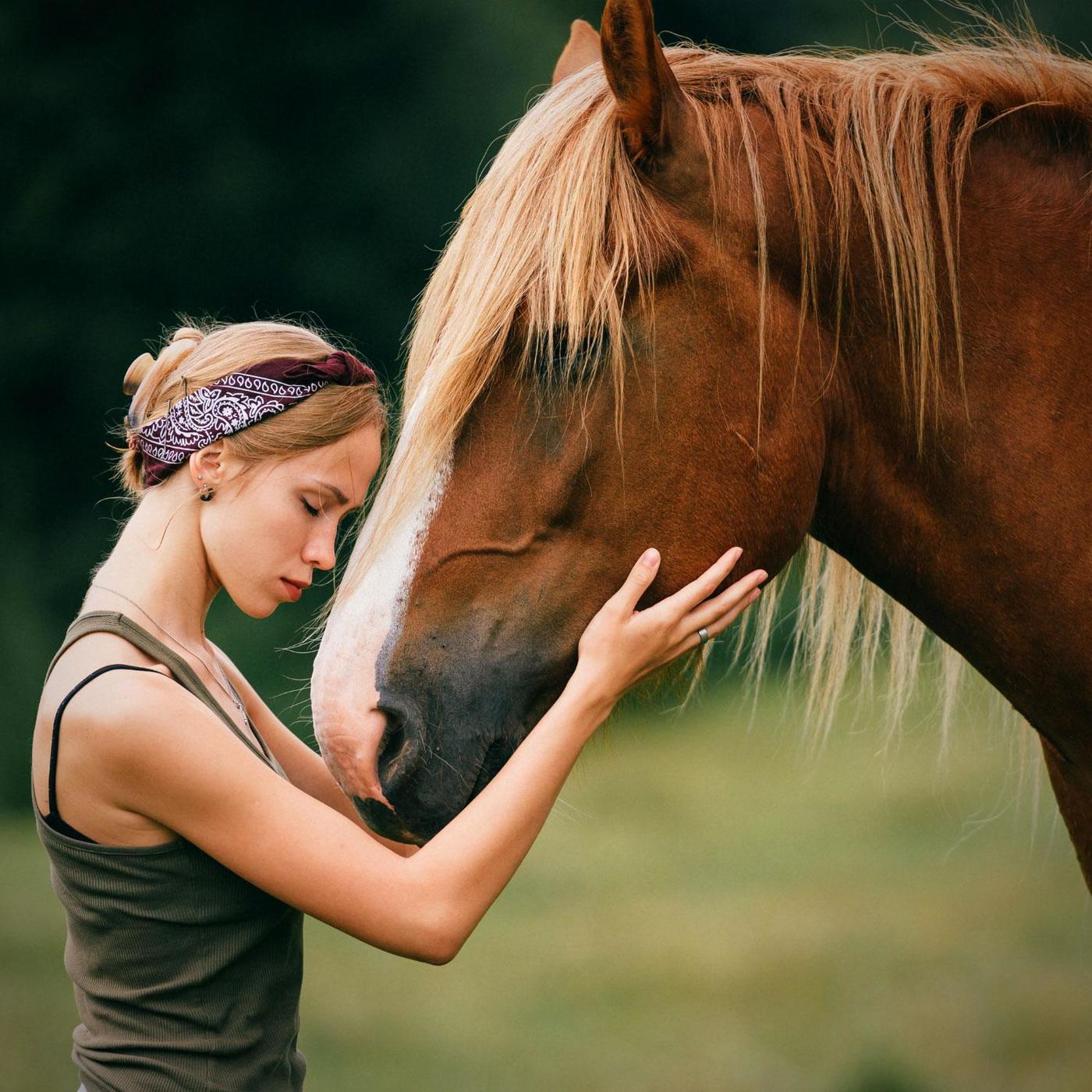 Communication animale : renouer avec le vivant