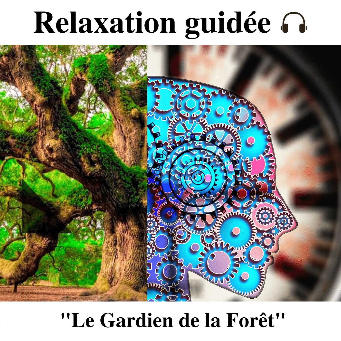 Relaxation guidée - Le Gardien de la Forêt