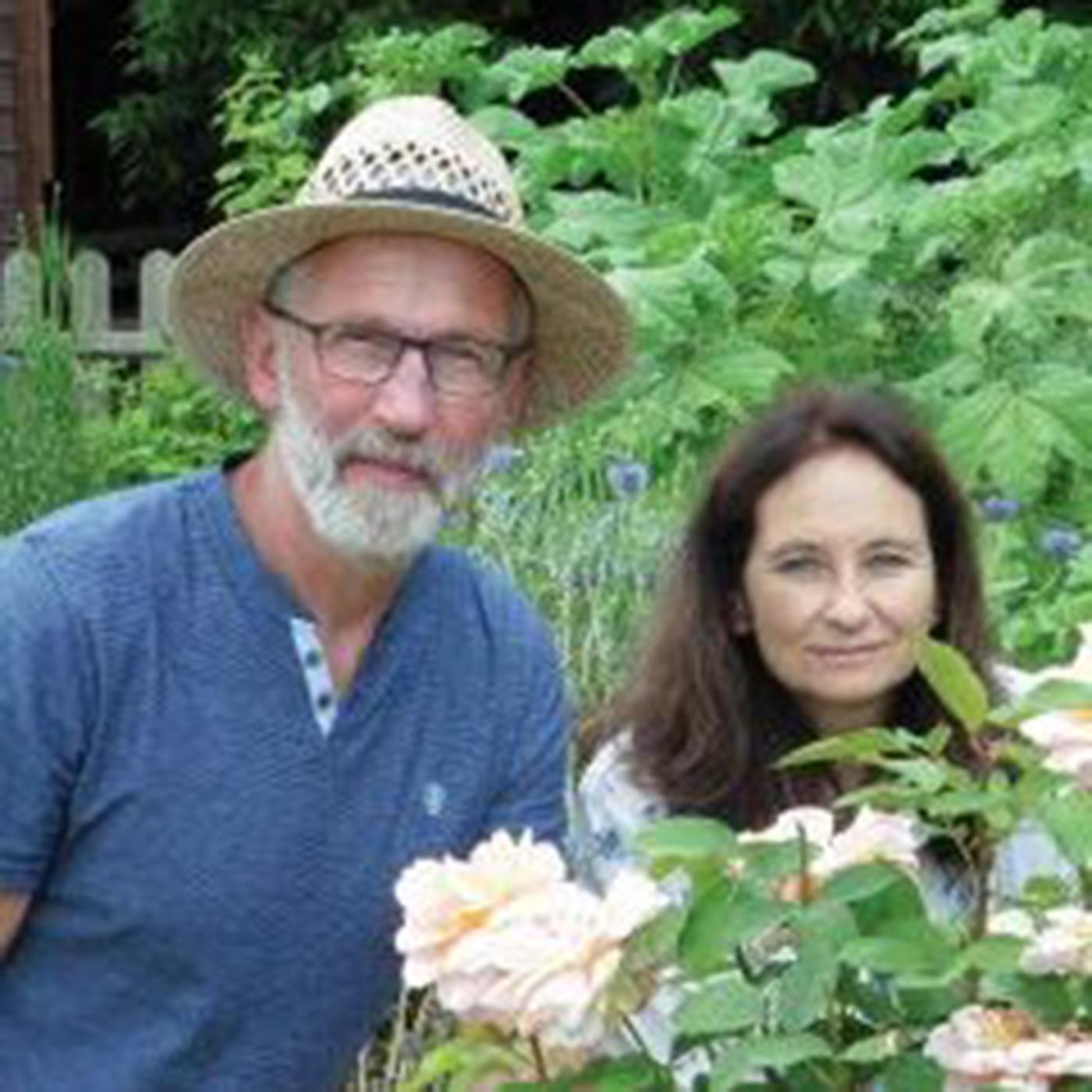 Patrice et Isabelle Drai: Lesplantes médicinales