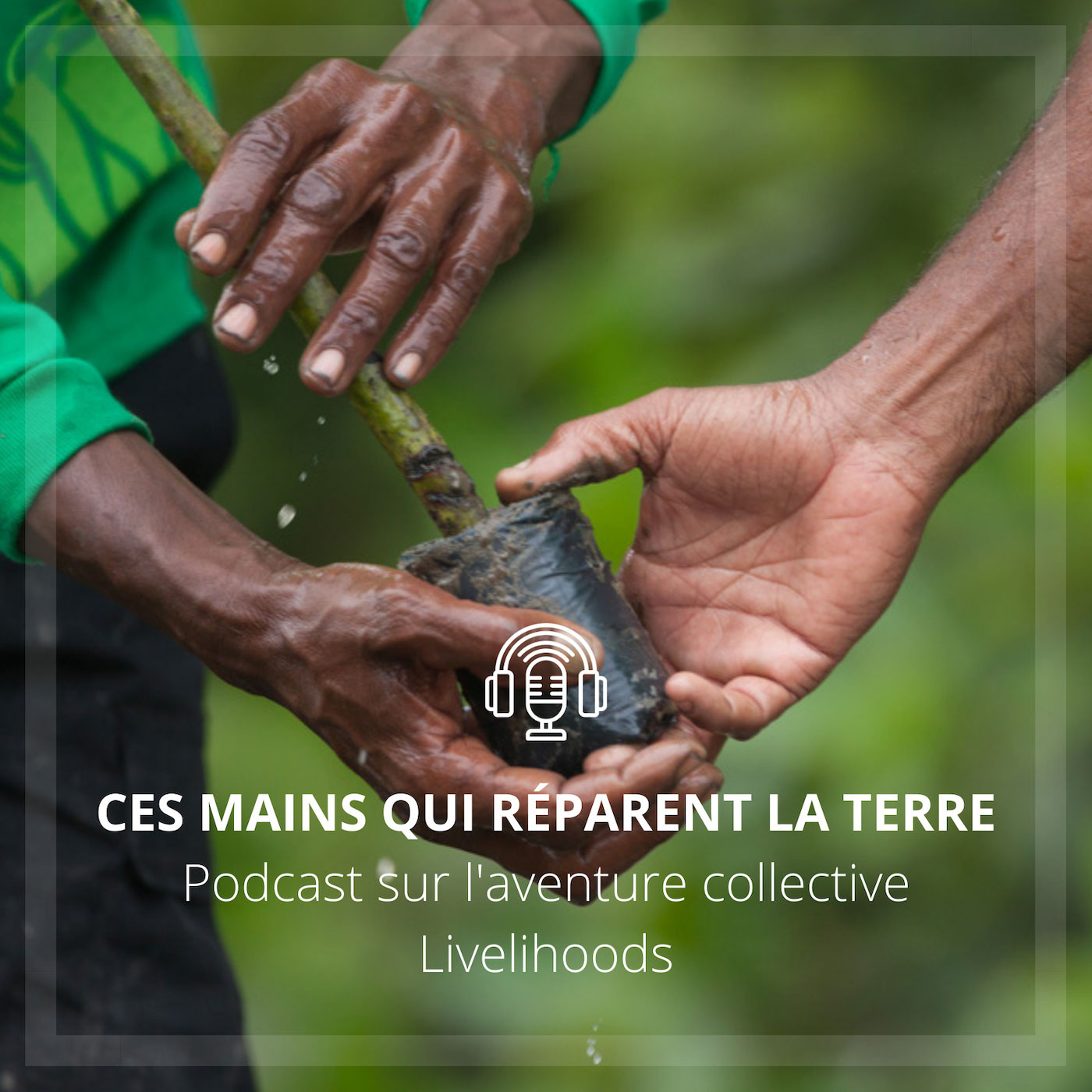 Ces mains qui réparent la Terre
