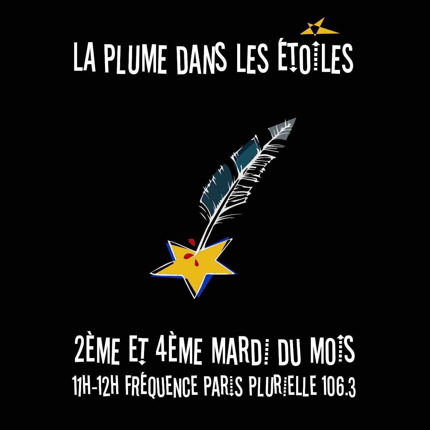 La Plume dans les Étoiles (de la chanson française au rock)
