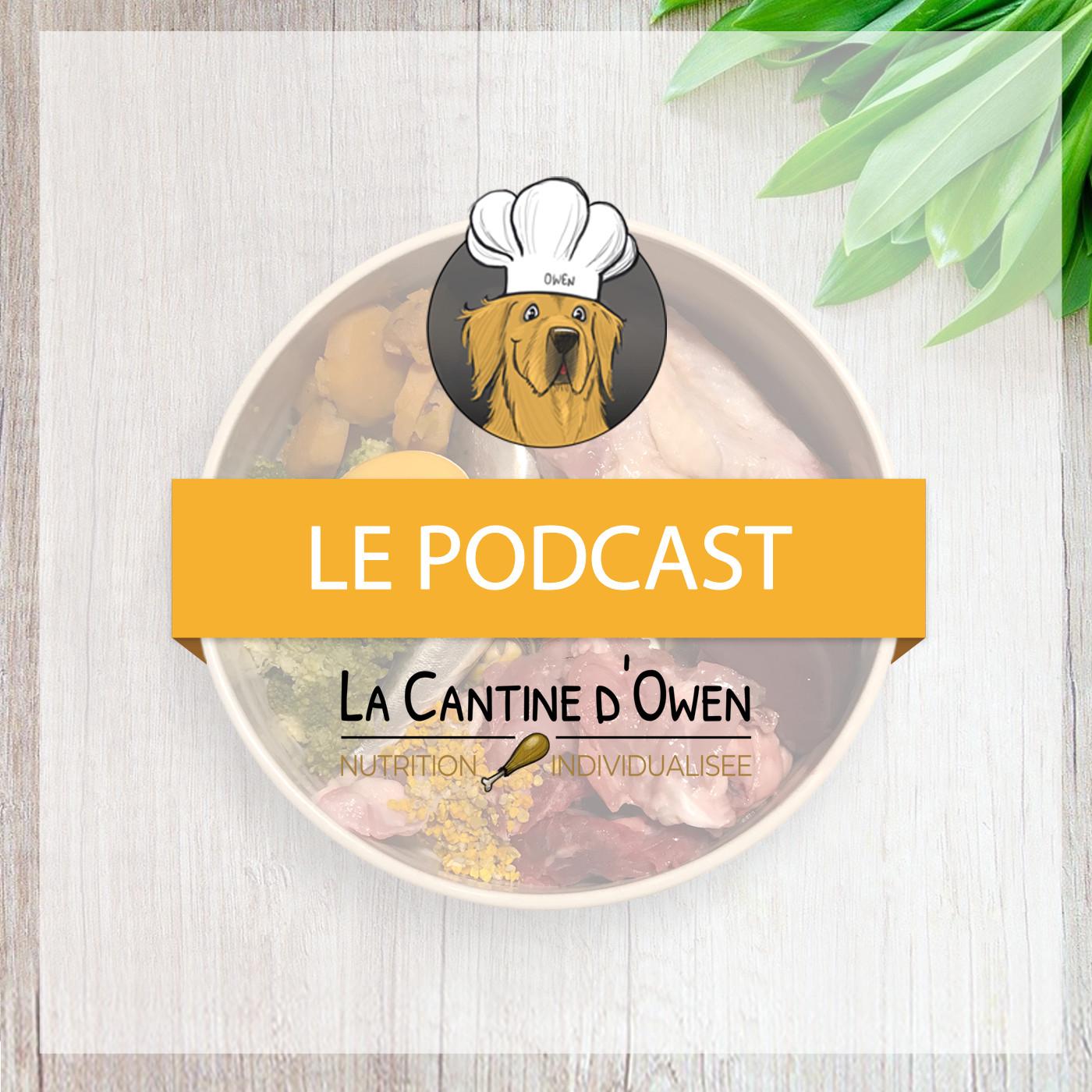 Le Podcast de La Cantine !