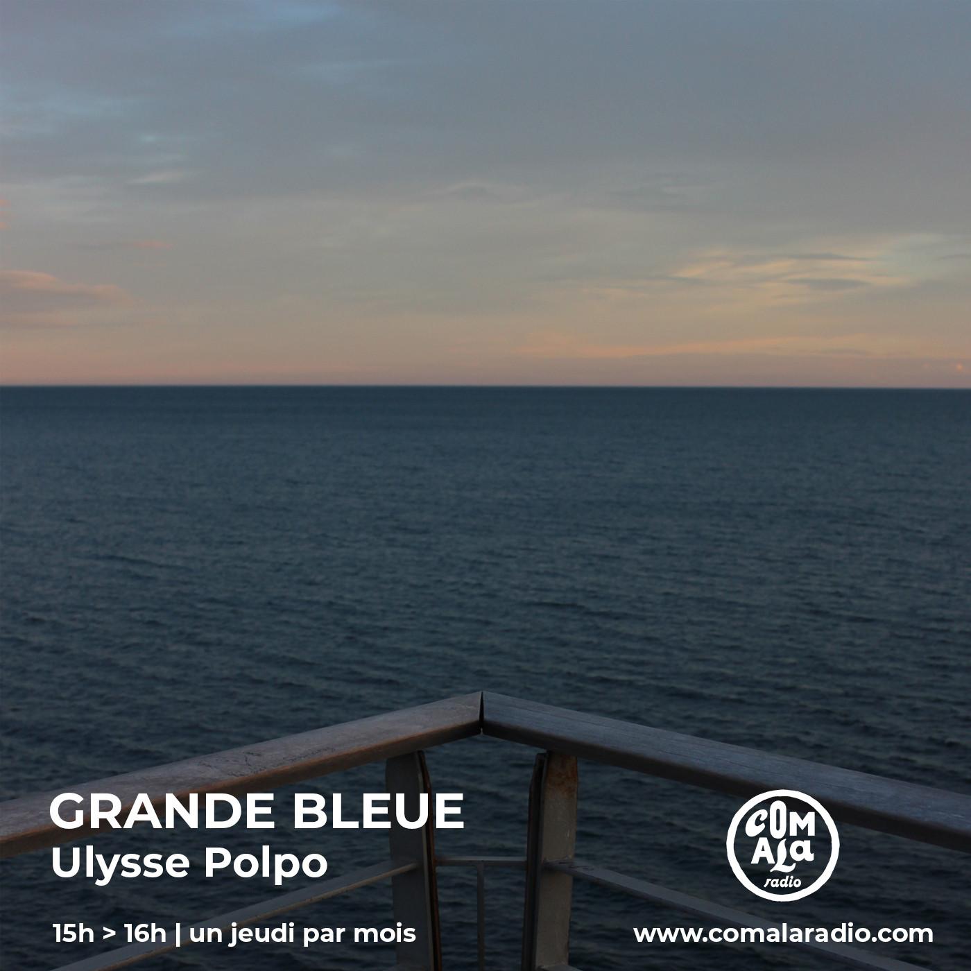 Ulysse Polpo - Grande Bleue