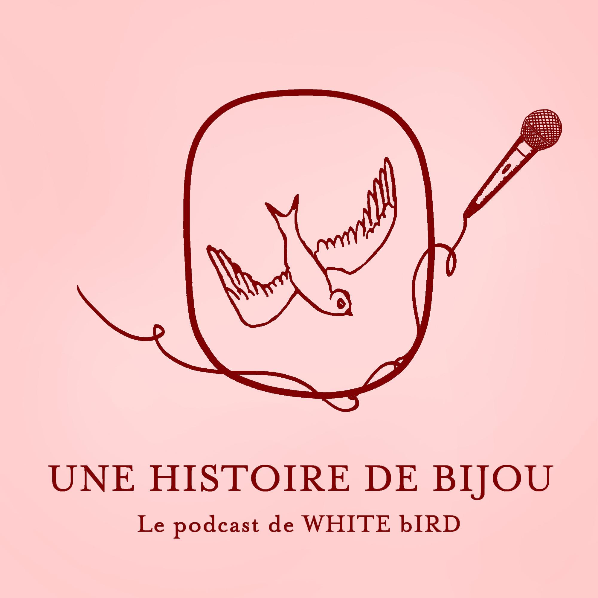 UNE HISTOIRE DE BIJOU
