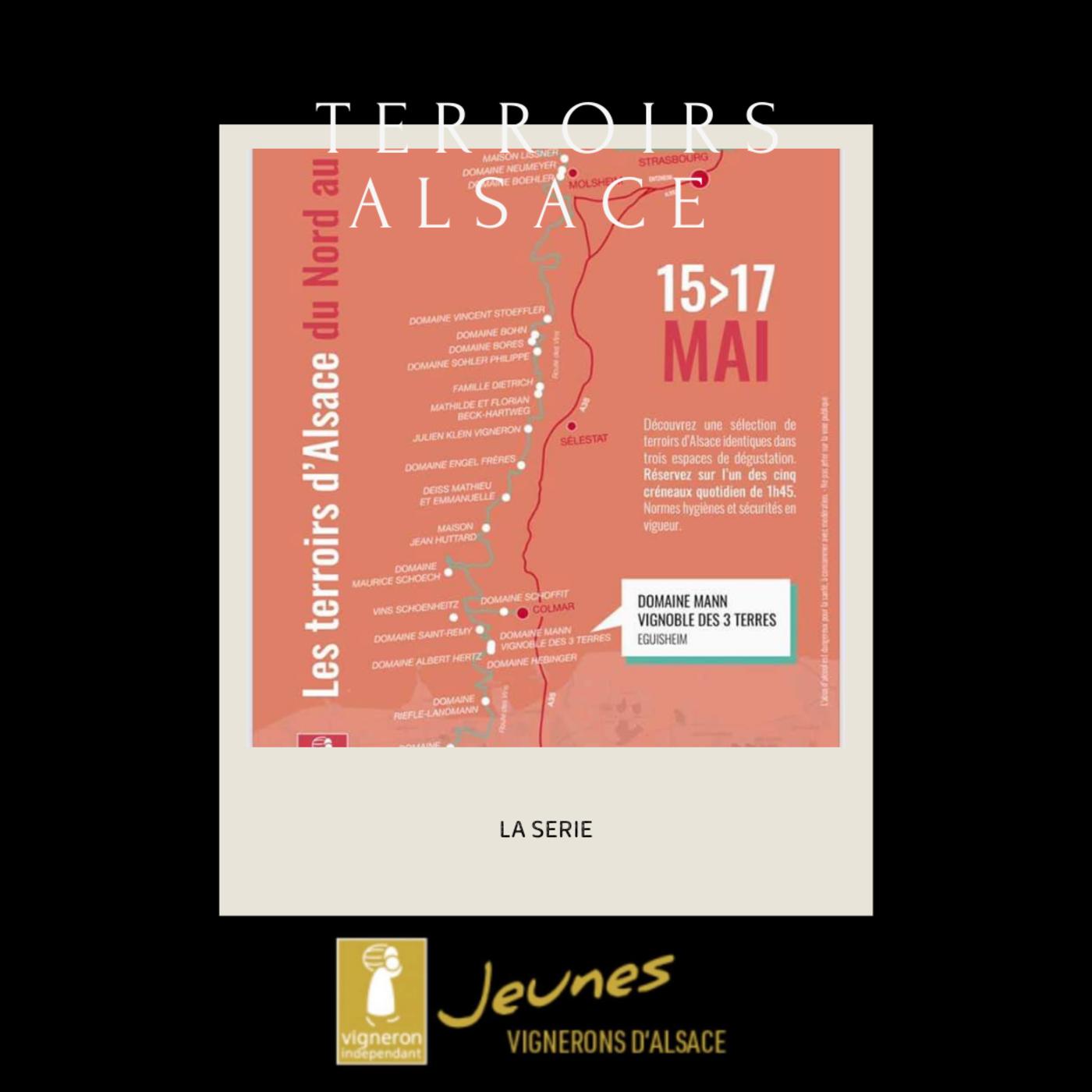 Terroirs d'Alsace: du Nord au Sud
